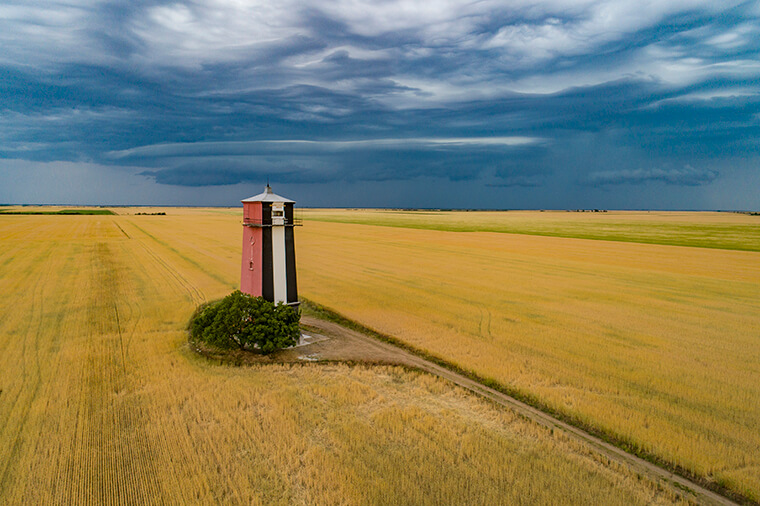 Yellow field and lighthouse