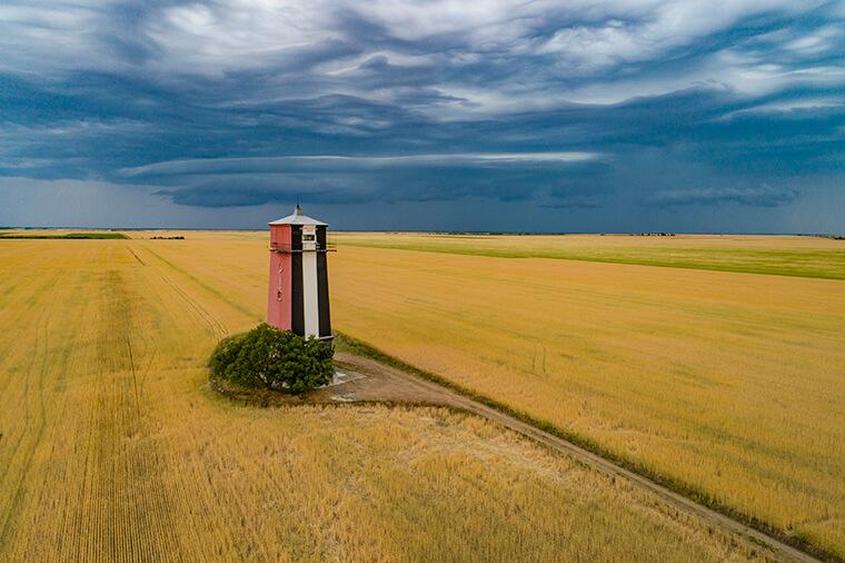 Желтое поле и маяк