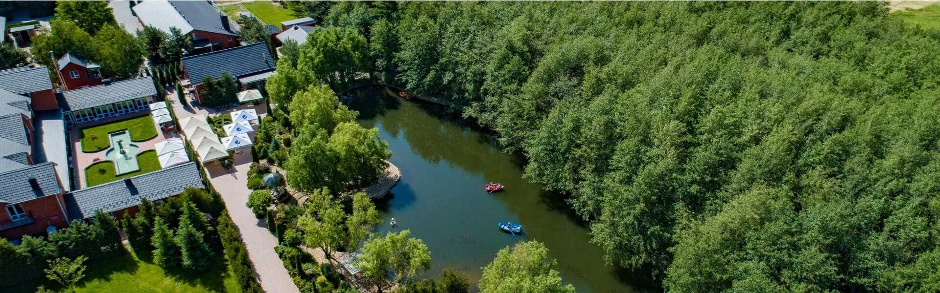 Leisure in the Forest of Kherson Region