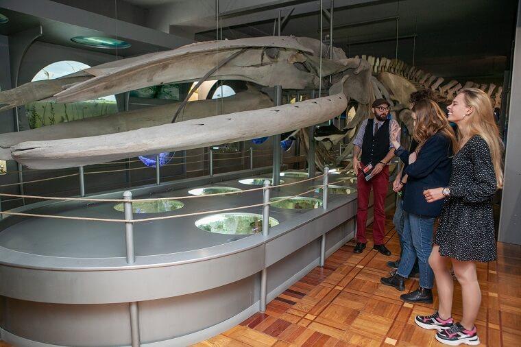 Музей природи