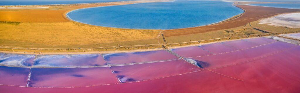 Розовое озеро в поселке Приозерное