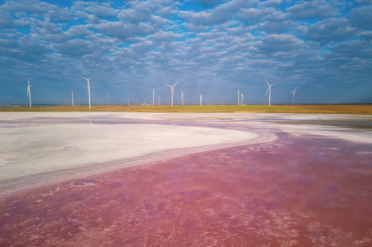 Wind and pink lake