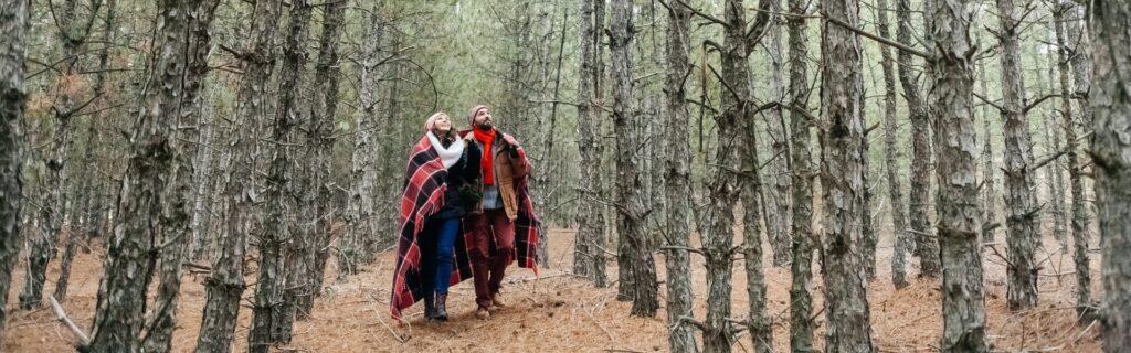Олешківський ліс: де знаходиться і що робити